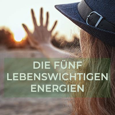 claudia-veith-vortrag-die-5-lebensnotwenigen-energien